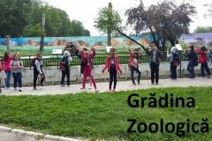 7 zoo (1)