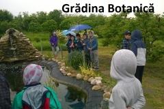 8 gradina botanica (2)